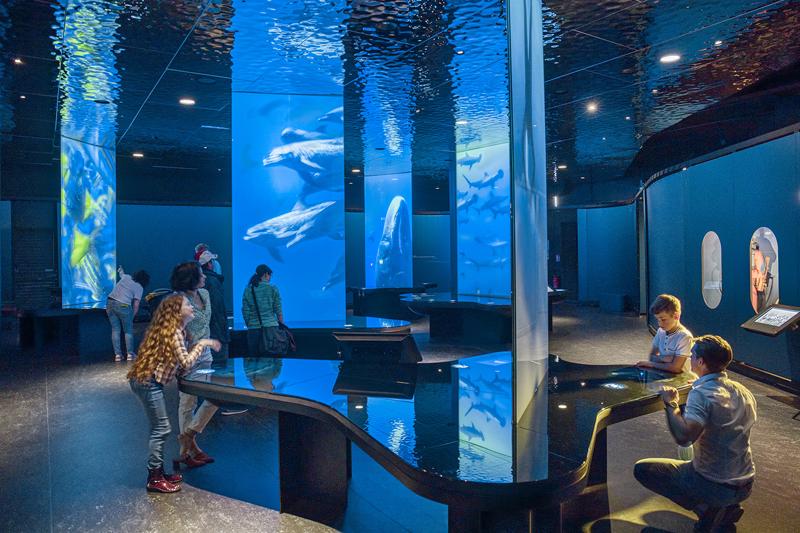 L OCEAN DU FUTUR_RENCONTRES © Vincent Rustuel
