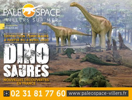 PALEOSPACE_CITE_DE_LA_MER_450X340PX (2)