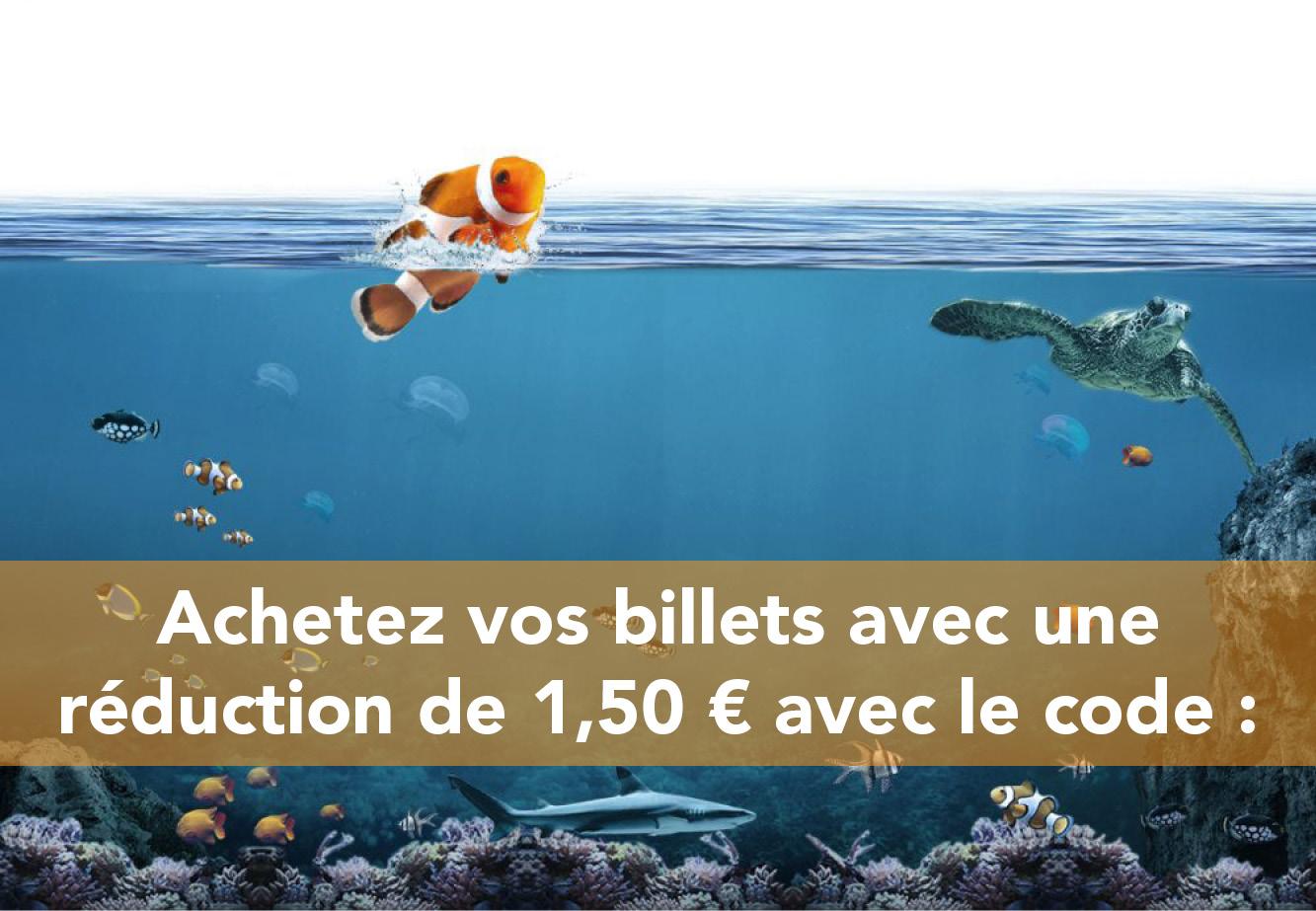 visu aquarium